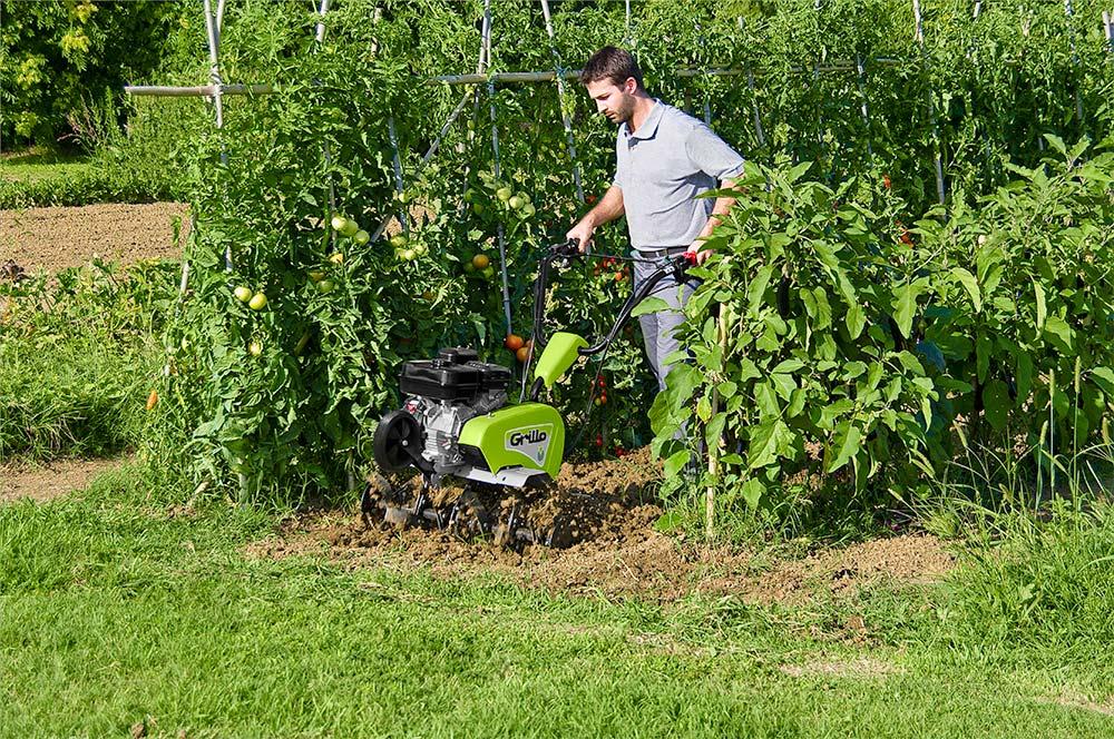 Vermietung Agrarmaschinen Motorhacke GRILLO PRINCESS MP3_ZWO Baumaschinen-Service GmbH